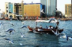 Những Trải Nghiệm Du Lịch Giá Rẻ Thú Vị Tại Dubai