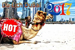 Tour Du Lịch Dubai khởi hành Mùng 1&2 tết Âm Lịch: DUBAI - ABU DHABI - SA MẠC SAFARI