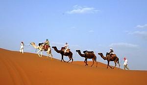 Top 5 trải nghiệm tuyệt vời tại thành phố Dubai