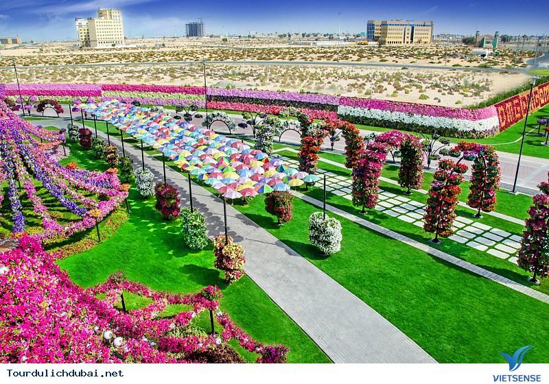 Du lịch Dubai đừng bỏ lỡ những điểm đến kỳ thú này – Phần 2 - Ảnh 1