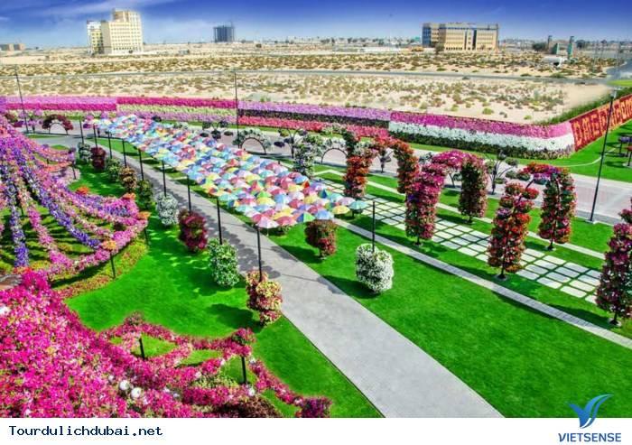 12 địa điểm du lịch Dubai nổi tiếng nhất - Vietsense Travel - Ảnh 1