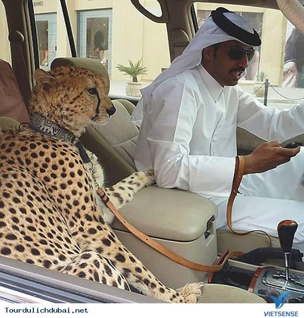 Cách thể hiện sự giàu có của Dubai như thế nào? - Ảnh 2