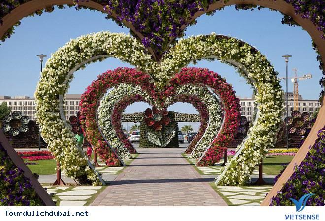 Chiêm Ngưỡng Vườn Hoa Diệu Kỳ Giữa Sa Mạc Ở Dubai - Ảnh 2