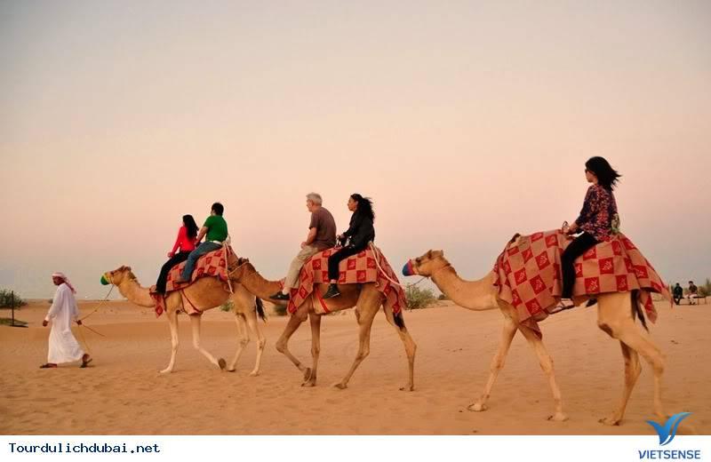 Chinh phục sa mạc Safari ở Dubai - Ảnh 1