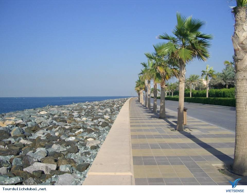Nhìn lại công cuộc lấn biển xây dựng quần đảo cây cọ tại Dubai - Ảnh 8