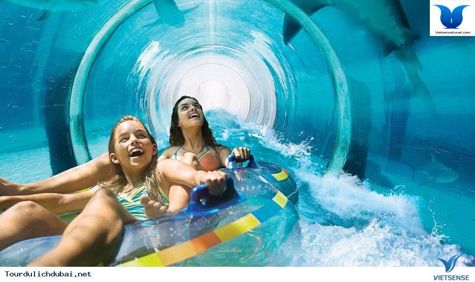 Công Viên Nước Aquaventure - Ảnh 2