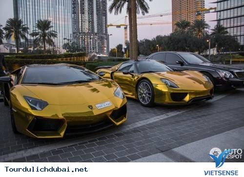 Đại gia Dubai và những thú vui cá biệt - Ảnh 4