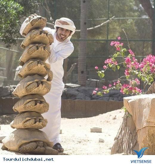 Tổng hợp những thắc mắc về Dubai giành cho bạn đọc - Ảnh 13