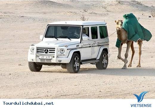 Tổng hợp những thắc mắc về Dubai giành cho bạn đọc - Ảnh 30