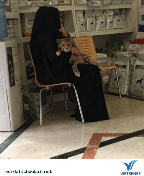 Hình ảnh bá đạo về sự giàu có của Dubai - Ảnh 6
