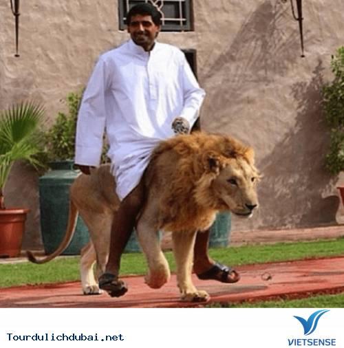 Hình ảnh bá đạo về sự giàu có của Dubai - Ảnh 21