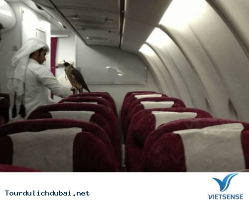 Hình ảnh bá đạo về sự giàu có của Dubai - Ảnh 17