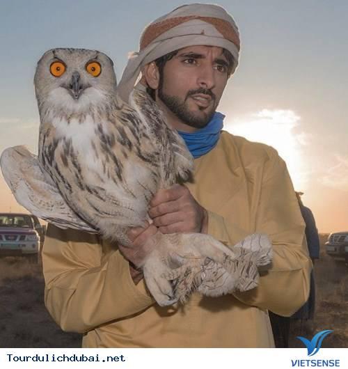 Ngắm nhìn hoàng tử Dubai chuẩn soái ca - Ảnh 5