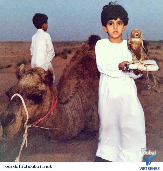 Ngắm nhìn hoàng tử Dubai chuẩn soái ca - Ảnh 4