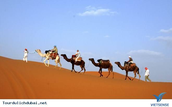 Top 5 trải nghiệm tuyệt vời tại thành phố Dubai,top 5 trai nghiem tuyet voi tai thanh pho dubai